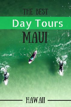 There is no shortage of things to do in Maui but let us shed some light on some of your best options. Features adventure, culture, food and history of Maui. Trip To Maui, Hawaii Vacation, Maui Hawaii, Vacation Ideas, Hawaii Life, Oahu, Maui Travel, Travel Usa, Travel Tips