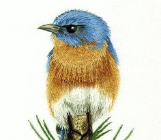 Beginners Hand Embroidery Kit - Eastern Blue Bird on Pine Branch Needle Painting Embroidery - Embroidery Art Picture by TanjasHandEmbroidery on Etsy https://www.etsy.com/listing/239481708/beginners-hand-embroidery-kit-eastern