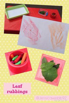 Leaf rubbings. EYFS