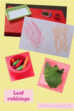 Leaf rubbings.