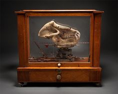 """Ron Pippin is an incredible artist, known for his strange """"toolboxes"""", wooden sculpture and anatomy books. One of my favourite artists."""
