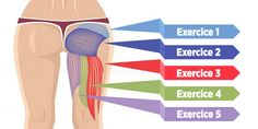 Glutes are the largest and most powerful muscle group in human body. They are very complex muscle structures that are involved Fitness Diet, Yoga Fitness, Health Fitness, Video Fitness, Best Bum Exercises, Glute Exercises, Workouts, Stretches, Glute Medius