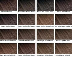 Brown Hair Color Chart Natural Medium Cool Is Probably As Dark I D Wanna Go