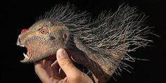 Descubren una nueva especie de dinosaurio del tamaño de una mascota | El Blincacequias
