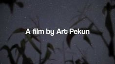 """#starrynightsJMU 2nd Place in our short film contest about #lightpollution goes to Art Pekun for his submission entitled """"It's Time for Change"""" Reel Change Film Festival Short Film Contest, Time For Change, Light Pollution, Submission, Film Festival, Art, Art Background, Kunst, Performing Arts"""