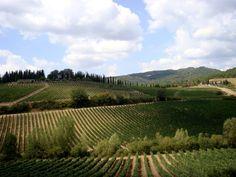 Vigneti toscani - La via del Chianti #toscana #chianti