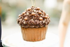 Giant rich Belgian chocolate cupcake
