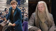 Tak Disangka, Dumbledore Akan Muncul dalam Film Fantastic Beast Lho Guys! Nggak Percaya?