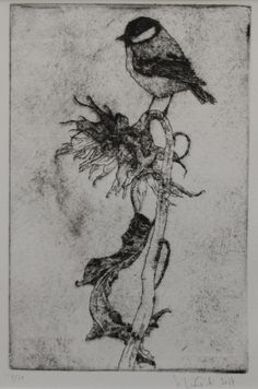 Tit on a sunflower drypoint Etchings, Art, Art Background, Kunst, Performing Arts, Art Education Resources, Artworks