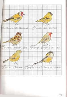 Gallery.ru / Фото #62 - Helene Le Berre - Les oiseaux a broder - Ulka1104