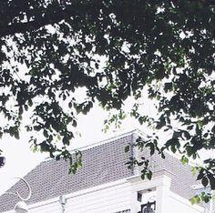 """The journeyman (8) . . #travel #traveler #traveling #travelgram #traveldiaries #amsterdam #holland #netherlands #throwbacksunday #innerpeace #canal #water #boats #latergram #writersofinstagram #writer #poetsofinstagram #poetrycommunity #photographer #photography #instagood #wolfdawn"" by @wolf__dawn. #fslc #followshoutoutlikecomment #TagsForLikesFSLC #TagsForLikesApp #follow #shoutout #followme #comment #TagsForLikes #f4f #s4s #l4l #c4c #followback #shoutoutback #likeback #commentback #love…"