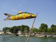 poisson-volant-paule-kingleur.jpg (794×595)