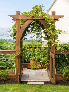 Outdoor Walkway, Patio, Garden Arbor, Garden Park, Raised Garden Beds, Raised Bed, Diy Arbour, Chicken Garden, Garden Arches