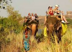 Adventure De Ceylon Travel and (PVT) Ltd, is a destination management company based in Sri Lanka, found by travel experts .We are not just another travel agency. Through an extensive network, we aim to deliver high-quality tour to suit all your needs. Elephant Trekking, Elephant Ride, Sri Lanka Holidays, Tourism Development, Safari, National Parks, The Incredibles, Tours, Adventure