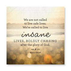 (in)RL 2014 We are not called to live safe lives. We area called to live INSANE lives, boldly chasing after the glory of God.