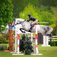 Equestrian: Jumping - this is my dream. At 51 years of age, am I too old to begin?