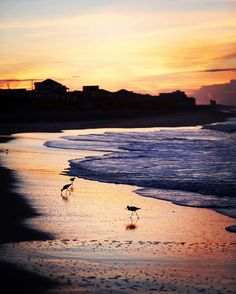 You know what they say about the early bird… We love sunrises on Emerald Isle! It doesn't get much better than this!