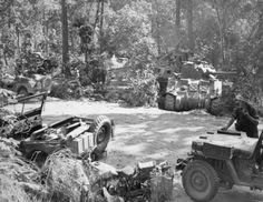 Jeeps and Sherman tanks hidden under trees by the side of a road in north Burma, 1944. (IWM)