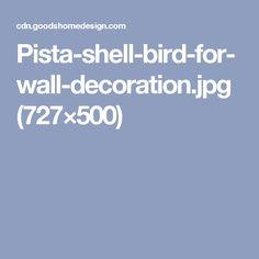 Pista-shell-bird-for-wall-decoration.jpg (727×500)