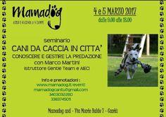 Cani da caccia in città: per conoscere e gestire la predazione c'è il seminario MamaDog :http://www.qualazampa.news/event/cani-da-caccia-in-citta-per-conoscere-e-gestire-la-predazione-ce-il-seminario-mamadog/