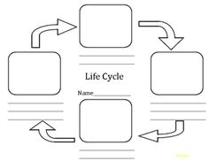 amphibian life cycle Life cycle templated to be used for a variety of different life cycles including Frogs Primary Science, Kindergarten Science, Science Classroom, Teaching Science, Science Education, Science For Kids, Classroom Ideas, Science Ideas, Teaching Ideas