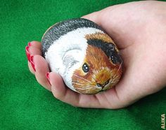 Painted rock Pet Rock