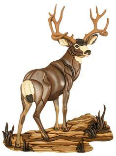Kathy Wise Intarsia, Mule deer