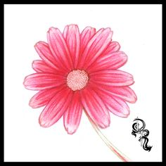 How to draw a daisy. In this lesson will learn how draw individual layers, an directional shading.