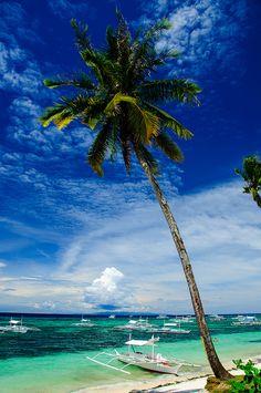 Panglao Palms Beach Resort in Bohol, Philippines