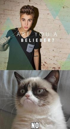 My husband and I had a debate whether the Biebs called his fans believers or beliebers. I thought they were called believers because what idiot calls their fans beliebers?!.. Justin bieber does. My husband proved me wrong.. :)