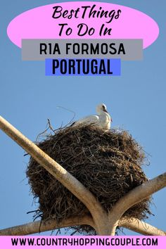 Packing For Europe, Travel Tips For Europe, Backpacking Europe, Visit Portugal, Spain And Portugal, Faro Portugal, Portugal Vacation, Portugal Travel Guide, Ria Formosa