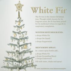 With White Fir essential oil on hand you don't need to worry about missing that Christmas tree smell. Just put a few drops in a diffuser or on a cotton ball and hide under the tree ;) For more info, or to order oils at 25% off retail, join the conversation on Facebook at https://www.facebook.com/eosandmore or www.mydoterra.com/shannonmaples