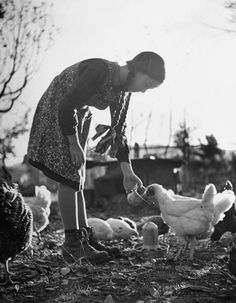 Girl in pigtails & boots, feeding small flock of chickens in Swiss farmyard.  Location: Switzerland   Date taken: December 1947   Photographer: Yale Joel