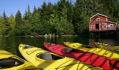 I went kayaking in Ketchikan, Alaska, and it was absolutely beautiful! I would love to go back. Alaska The Last Frontier, Rainy City, North To Alaska, Ketchikan Alaska, Visitors Bureau, Alaskan Cruise, Totem Poles, Alaska Travel, Travel Videos