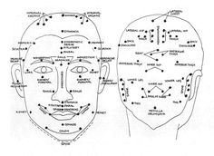 Acupressure Therapy 9 Acupressure Point On The Body To Improve Memory Now - How to improve memory using acupressure points. This is how to do acupressure massage to improve concentration, memory, and relieve headaches. Massage Tips, Face Massage, Massage Techniques, Massage Therapy, Acupressure Therapy, Acupressure Massage, Foot Reflexology, Acupuncture Benefits, Massage