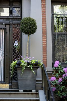 Marlborough Street / David Fuller Photo (by TheFullerView)