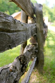 This photo is such a perfect example of how creative a photographer can be.  Who'd think an old, gnarly wooden fence could be so beautiful?  Esp. from this angle?  Love it!!