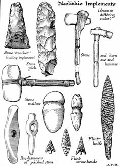 The Stone Age marks the first appearance of the beasts known as humans and gets its name because these creatures used stone tools. Scientists have divided the period into three distinct phases: Paleolithic, Mesolithic and Neolithic. Stone Age Tools, Stone Age Art, Native American Tools, Native American Artifacts, Indian Artifacts, Ancient Artifacts, Early Humans, Iron Age, Ancient Civilizations
