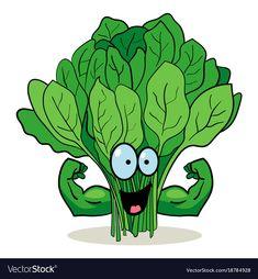 Cartoon spinach vector image on VectorStock Cartoon N, Fruit Cartoon, Cartoon Drawings, Cartoon Characters, Cartoon Memes, Art Drawings For Kids, Drawing For Kids, Vegetable Cartoon, Funny Fruit