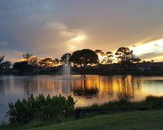 Florida Paradise #miami #florida #miamibeach #sobe #southbeach #brickell #visitflorida @floridapicture