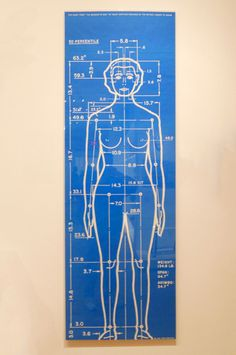 Poster from The Measure of Man, Henry Dreyfuss
