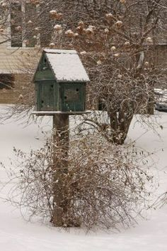 Birdhouses! Love them, especially when they have snow on them, hehe.