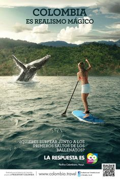 Whale watching is one of the many reasons why Discover it with Colombia Eco Travel Creative Advertising, Advertising Poster, Tourism Poster, Colombia Travel, Magic Realism, Tour Operator, Caribbean Sea, Whale Watching, Bts