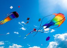 Attend the Festival de Cerf Volant et du Vent (kite festival) in Châtelaillon-Plage, Charente-Maritime taking place in March © NordCry / Fotolia