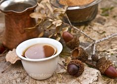 How To Process Acorns To Make Acorn Coffee » The Homestead Survival