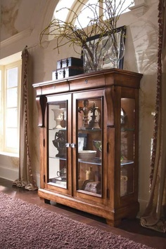 display  case--like how it can be a centerpiece like a fireplace, but it's not.