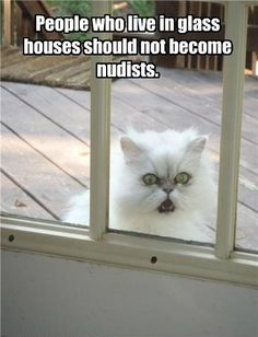 Funny Quotes about Glass Houses