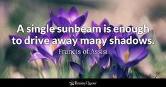 A single sunbeam is enough to drive away many shadows. - Francis of Assisi #brainyquote #QOTD #sunbean #shadows Boyfriend Goals Relationships, Boyfriend Goals Teenagers, Relationship Gifs, Francis Of Assisi Quotes, Thomas Jefferson Quotes, Driving Quotes, Perfume Versace, Perfume Calvin Klein