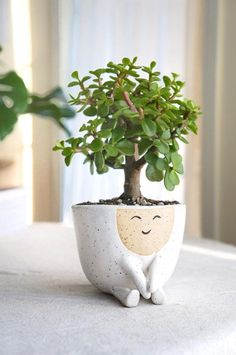 flower pot Ceramic handmade planter pot Maya Perfect for the modern home, this white, speckled stoneware planter is perfect for a small to medium size plant or succulent. Maya with her swe Maya, Cerámica Ideas, Fleurs Diy, Decoration Plante, Home Decoration, Stoneware Clay, Ceramic Clay, Earthenware, Ceramic Pottery