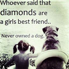 Dogs are a girls best friend! I love my dog Love My Dog, Puppy Love, Diamond Are A Girls Best Friend, Mans Best Friend, Best Friends, Friends Forever, Dog Friends, Loyal Friends, True Friends